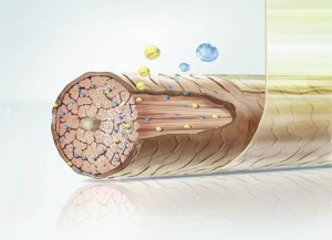 как происходит биоламинирование волос
