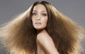 зависимость волос от влажности воздуха