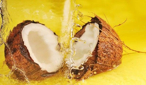 Фотография кокоса